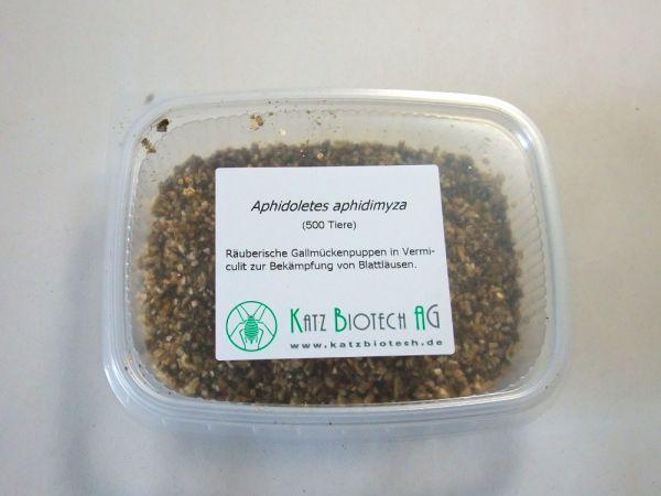 APHIDOLETES-APHIDIMYZA-500-PRODUKT-WEB