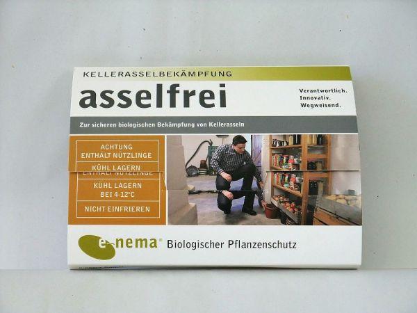 ASSELFALLE-ART4162H-PRODUKT-KLEIN-KATZ